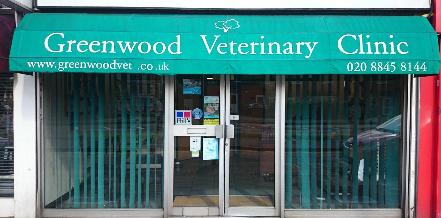 Greenwood Veterinary clinic south ruislip 02088458144